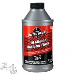 تمیز کننده رادیاتور گانک GUNK 10 Minute Radiator Flush