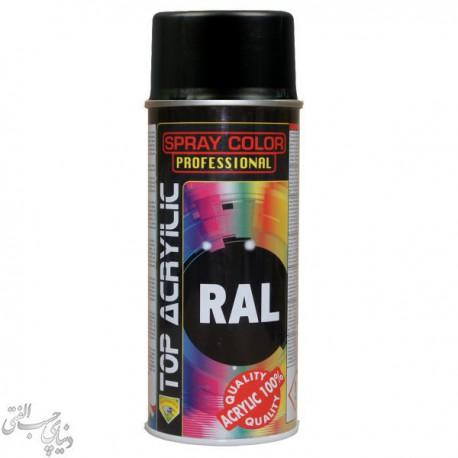 اسپری رنگ مشکی براق اکو سرویس 9005 Eco Service RAL Spray Color