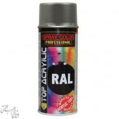 اسپری رنگ خاکستری تیره اکو سرویس 7037 Eco Service RAL Spray Color